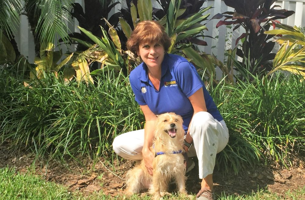 Tampa Bay area dog trainer