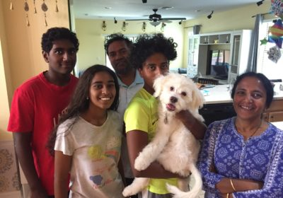 #goldendoodles #puppytrainingtampa