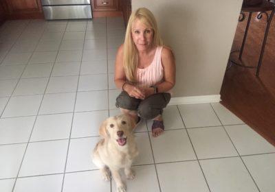#puppytrainingriverviewfl #puppytrainingnearme #bestpuppytraining