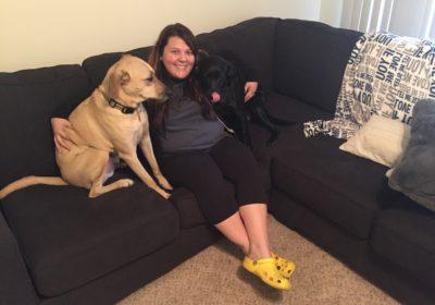 #dogsinapartments #dogtrainingbrandon